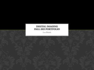 Digital imaging Fall 2013 Portfolio