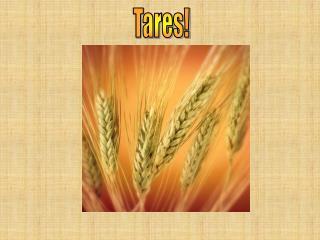 Tares!