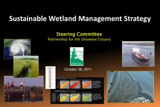 Sustainable Wetland Management Strategy