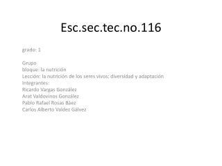 Esc.sec.tec.no.116