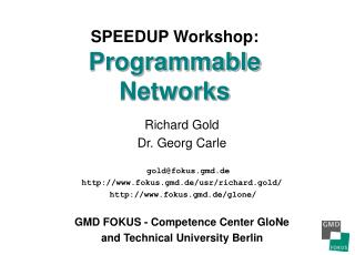 SPEEDUP Workshop:  Programmable Networks