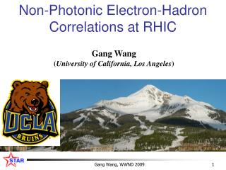 Non-Photonic Electron-Hadron Correlations at RHIC