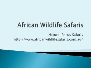 Botswana Safari - Africanwildlifesafaris.com.au