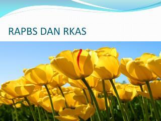 RAPBS DAN RKAS
