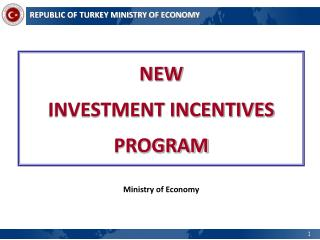 NEW  INVESTMENT INCENTIVES PROGRAM