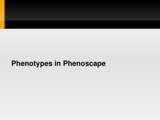 Phenotypes in Phenoscape