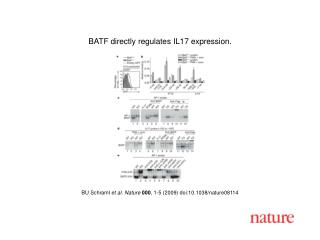BU Schraml  et al. Nature 000 , 1- 5  (2009) doi:10.1038/nature08114
