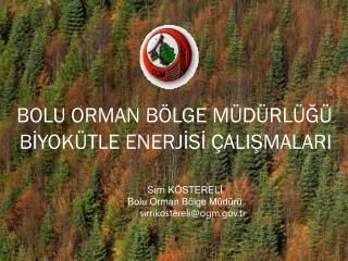 BOLU ORMAN BÖLGE MÜDÜRLÜĞÜ    BİYOKÜTLE ENERJİSİ ÇALIŞMALARI
