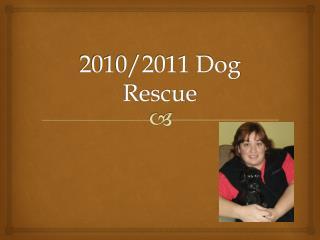 2010/2011 Dog Rescue