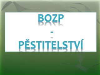 BOZP  -  PĚSTITELSTVÍ