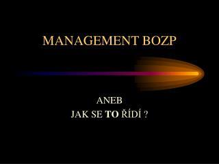 MANAGEMENT BOZP