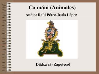 Ca máni (Animales)