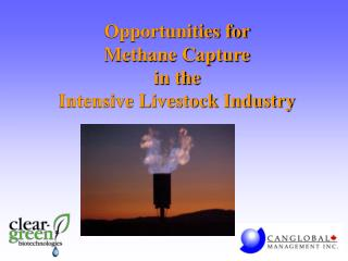 Opportunities for  Methane Capture  in the Intensive Livestock Industry