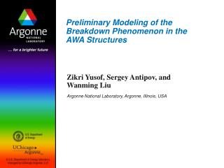 Preliminary Modeling of the Breakdown Phenomenon in the AWA Structures
