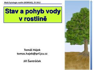 Malá fyziologie rostlin (KEBR562), ZS 2012