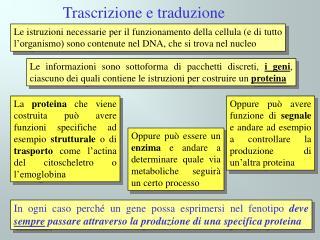 Trascrizione e traduzione