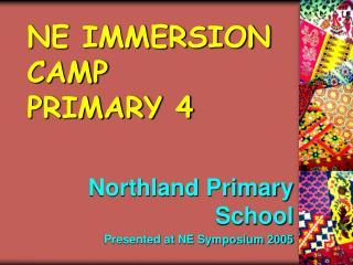 NE IMMERSION CAMP PRIMARY 4