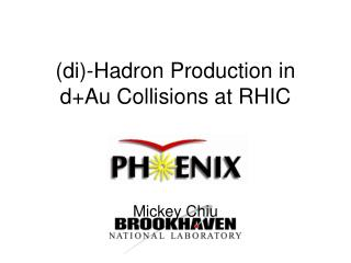 (di)-Hadron Production in d+Au Collisions at RHIC