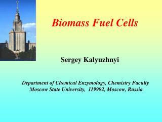 Biomass Fuel Cells