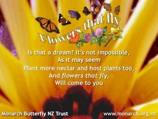 Monarch Butterfly NZ Trust