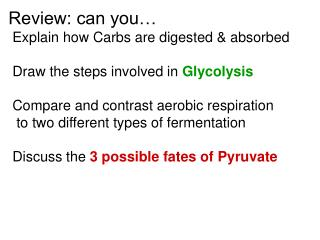 Review: can you…  Explain how Carbs are digested & absorbed