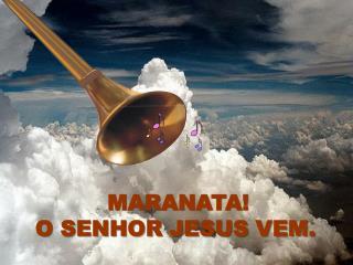 MARANATA!  O SENHOR JESUS VEM.