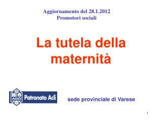 La tutela della maternità