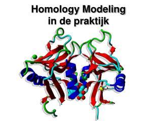 Homology Modeling in de praktijk