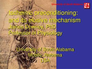 University of South Alabama Mobile, Alabama  USA