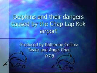 Dolphins and their dangers caused by the Chap Lap Kok airport