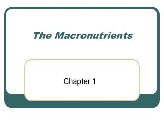 The Macronutrients