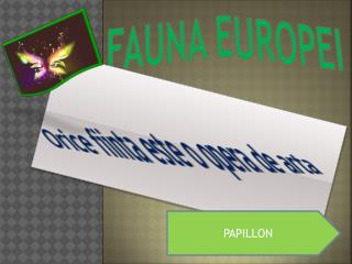 Fauna Europei