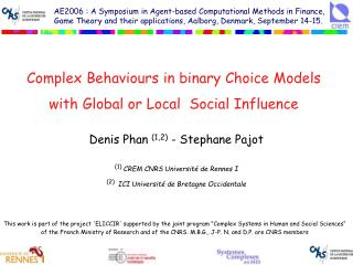 Complex Behaviours in binary Choice Models with Global or Local  Social Influence