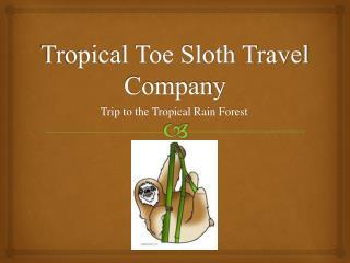 Tropical Toe Sloth Travel Company
