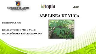 ABP LINEA DE YUCA