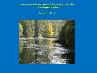 Lower Columbia River Conservation and Recovery Plan Implementation Team