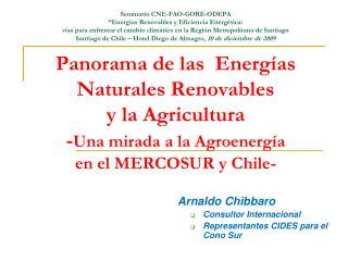 Arnaldo Chibbaro Consultor Internacional Representantes CIDES para el Cono Sur