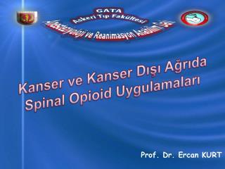 Kanser ve Kanser D??? A?r?da  Spinal Opioid  Uygulamalar?