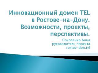 Инновационный домен  TEL  в Ростове-на-Дону. Возможности, проекты, перспективы.