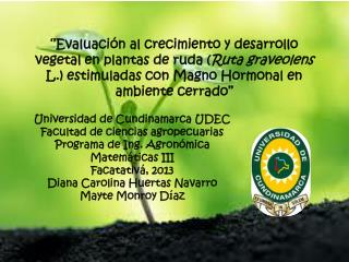 Universidad de Cundinamarca UDEC Facultad de ciencias agropecuarias Programa de Ing. Agronómica