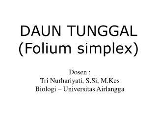 DAUN TUNGGAL (Folium simplex)