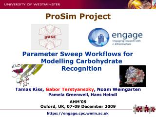 Parameter Sweep Workflows for Modelling Carbohydrate Recognition