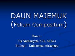 DAUN MAJEMUK ( Folium  Compositum )