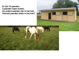 Er zijn 12 paarden. 4 paarden lopen buiten.  De andere paarden zijn in het hok.
