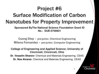 Project #6 Surface Modification of Carbon Nanotubes for Property Improvement