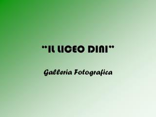 """""""IL LICEO DINI"""""""