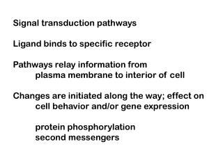 Signal transduction pathways  Ligand binds to specific receptor  Pathways relay information from  plasma membrane to int