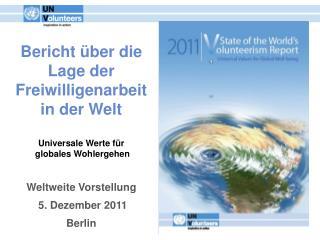 Bericht über die Lage der Freiwilligenarbeit in der Welt