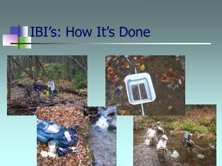 IBI's: How It's Done