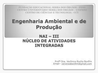 Engenharia  Ambiental e de Produção NAI –  III NÚCLEO  DE ATIVIDADES INTEGRADAS